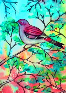 8 x 10 watercolor print available for purchase at https://www.etsy.com/listing/120056209/watercolor-bird-art-print-8-x-10?ga_search_query=purple%2Bfinch