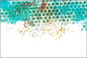 FREEBIE journal background b