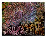feathers watermark copy