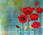poppieswatermark copy
