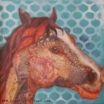 """""""Equine Imagination"""""""