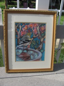 King Goldfinch framed
