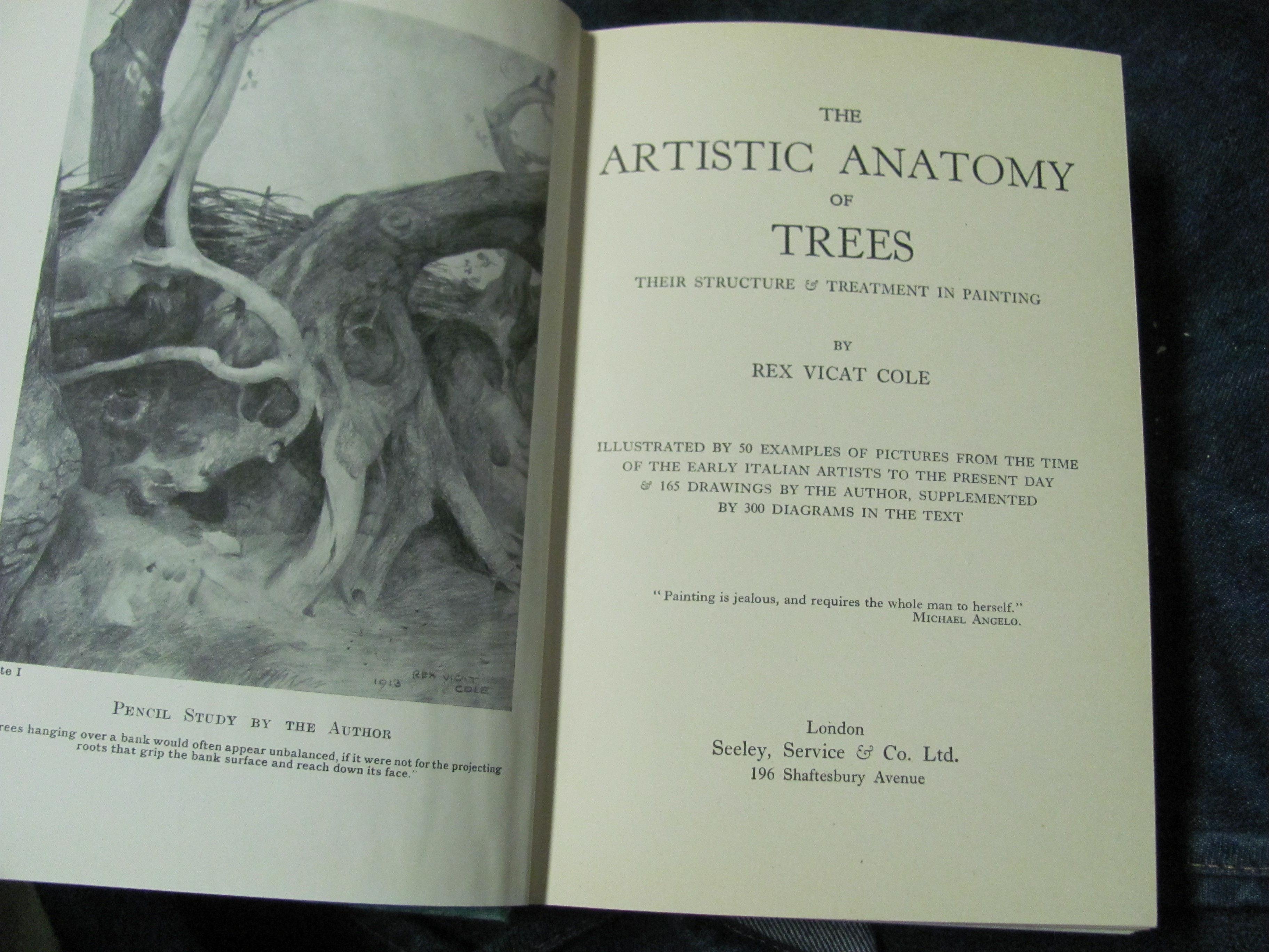 The Artistic Anatomy of Trees by Rex Vicat Cole – From Victory Road